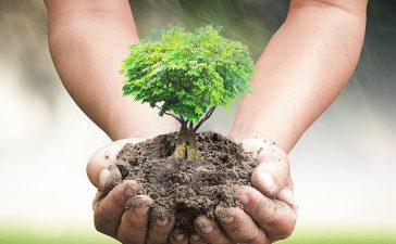 بالتعاون مع وزارة التعليم...هيئة الأرصاد تكرم حماة البيئة