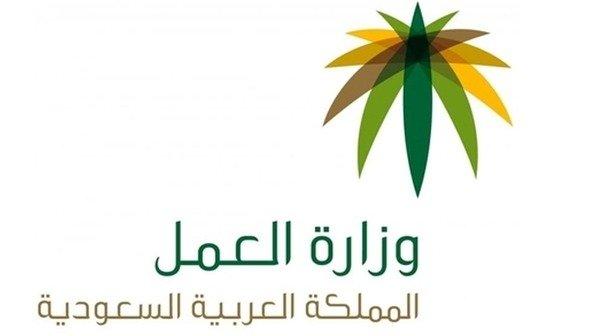 وزارة العمل تنظم ورشة للتطوع بالجامعات
