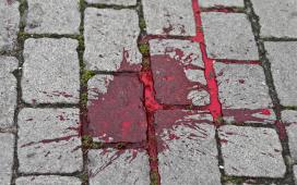 لماذا الارض لا تمتص الدماء