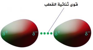 قارن بين قوى التجاذب بين الجزيئات وقوى التجاذب الجزيئية